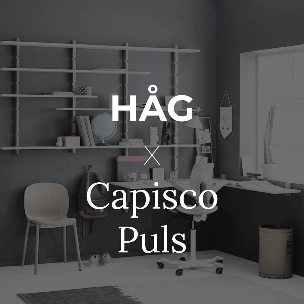 Hag2 (1)